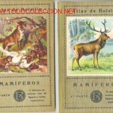 Libros antiguos: 3 TOMOS MAMIFEROS .. EDITOR SEITHER 1934 .. LAMINAS EN COLORES CON Y FIGURAS. Lote 27133557