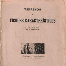 Libros antiguos: TERRENOS Y FÓSILES CARACTERISTICOS / POR PABLO FABREGA.. Lote 26421713