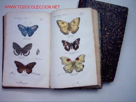 HISTORIA NATURAL - BUFFON - 2 TOMOS - VI Y VII (Libros Antiguos, Raros y Curiosos - Ciencias, Manuales y Oficios - Otros)