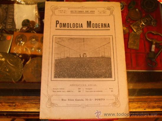 JERÓNIMO CAETANO RIBEIRO - POMOLOGIA MODERNA - REVISTA AGRÍCOLA LUSO BRASILEIRA 1919 (Libros Antiguos, Raros y Curiosos - Ciencias, Manuales y Oficios - Otros)