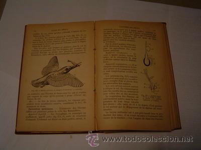 Libros antiguos: COURS ELEMENTAIRE DE ZOOLOGIE MUY ILUSTRADO - Foto 2 - 26336792