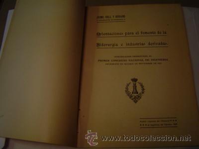 1920 ORIENTACIONES PARA EL FOMENTO DE LA SIDERURGIA E INDUSTRIAS DERIVADAS (Libros Antiguos, Raros y Curiosos - Ciencias, Manuales y Oficios - Otros)