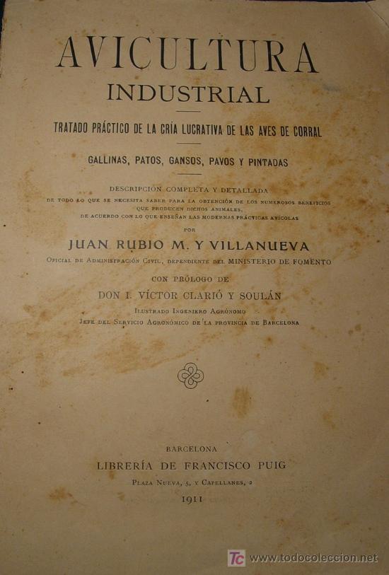 AVICULTURA INDUSTRIAL - GALLINAS PATOS GANSOS PAVOS Y PINTADAS - BARCELONA 1911 - (Libros Antiguos, Raros y Curiosos - Ciencias, Manuales y Oficios - Otros)