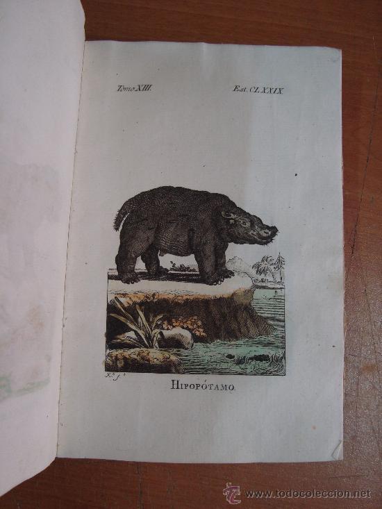 Libros antiguos: HISTORIA NATURAL, GENERAL Y PARTICULAR. CONDE DE BUFFON. TOMO XIII. IBARRA 1798. - Foto 5 - 23797458