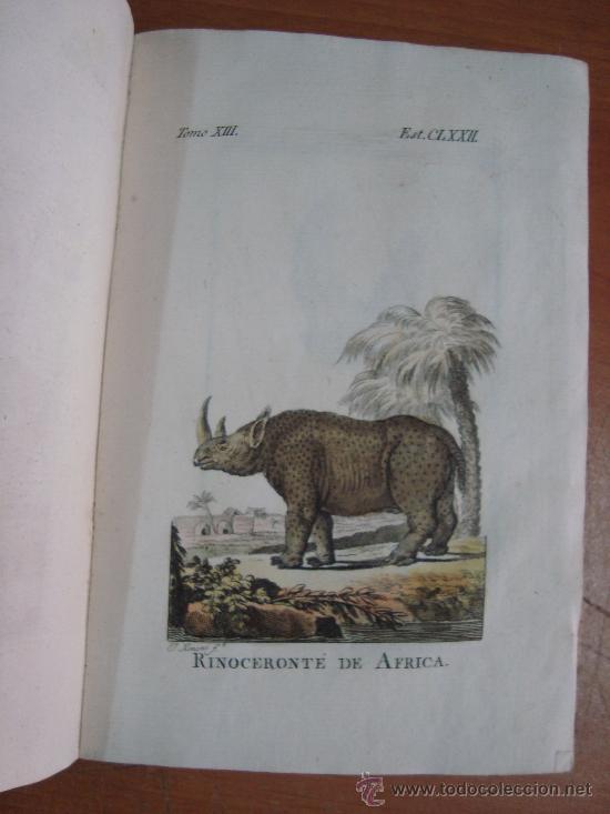 Libros antiguos: HISTORIA NATURAL, GENERAL Y PARTICULAR. CONDE DE BUFFON. TOMO XIII. IBARRA 1798. - Foto 10 - 23797458