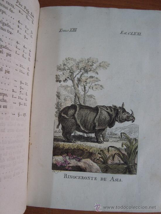 Libros antiguos: HISTORIA NATURAL, GENERAL Y PARTICULAR. CONDE DE BUFFON. TOMO XIII. IBARRA 1798. - Foto 11 - 23797458