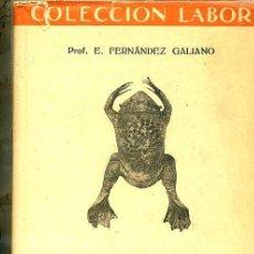 Libros antiguos: FUNDAMENTOS DE LA BIOLOGÍA (1945) EDITORIAL LABOR. Lote 26809666