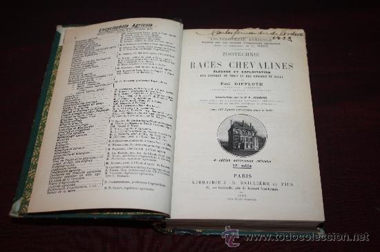 Libros antiguos: 1573- FANTÁSTICO LIBRO 'RACES CHEVALINES', PAUL DIFFLOTH, AÑO 1916 - Foto 2 - 27729750