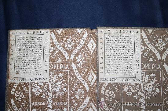 Libros antiguos: 0433- 'L'APTITUD ECONOMICA DE CATALUNYA' 2 VOL. COMPLETA - PER CARLES PI SUNYER - ED. BARCINO 1927 - Foto 3 - 31096106