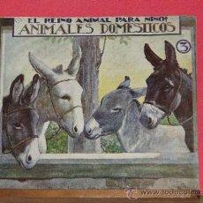 Libros antiguos: EL REINO ANIMAL PARA NIÑOS. ANIMALES DOMESTICOS 3. Lote 32745343