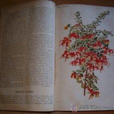 Libros antiguos: REVUE HORTICOLE. L. BOURGUIGNON (ADMIN.). REVISTA QUINCENAL. AÑO COMPLETO DE 1887. EN FRANCÉS.. Lote 32870360