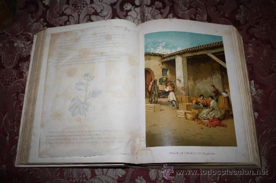 Libros antiguos: 1355- 'HISTORIA GENERAL DE LA AGRICULTURA' ESTUDIO TEÓRICO Y PRÁCTICO 3 TOMOS 18?? EDITOR JAIME SEIX - Foto 11 - 33155661
