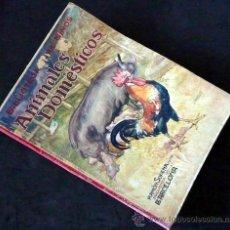 Libros antiguos: ANIMALES DOMESTICOS. GENARO DEL AGUILA. BIBLIOTECA PARA NIÑOS. RAMÓN SOPENA EDITOR. 1931. Lote 34576245