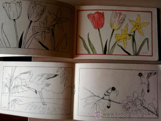 Libros antiguos: 2 CUADERNOS -PINTURAS INFANTILES- SATURNINO CALLEJA-MADRID- AÑO 1935, PRE GUERRA CIVIL ESPAÑOLA. - Foto 3 - 34811969