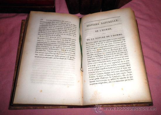 Libros antiguos: OBRAS DE BUFFON - AÑO 1842 - BELLA EDICION ILUSTRADA CON GRABADOS EN COLOR. - Foto 6 - 36367937