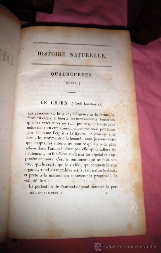 Libros antiguos: OBRAS DE BUFFON - AÑO 1842 - BELLA EDICION ILUSTRADA CON GRABADOS EN COLOR. - Foto 11 - 36367937