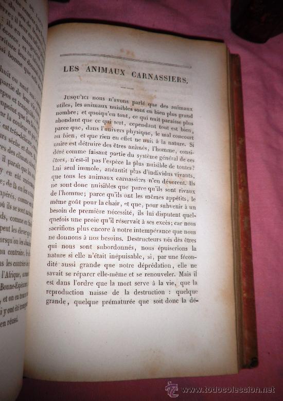 Libros antiguos: OBRAS DE BUFFON - AÑO 1842 - BELLA EDICION ILUSTRADA CON GRABADOS EN COLOR. - Foto 13 - 36367937
