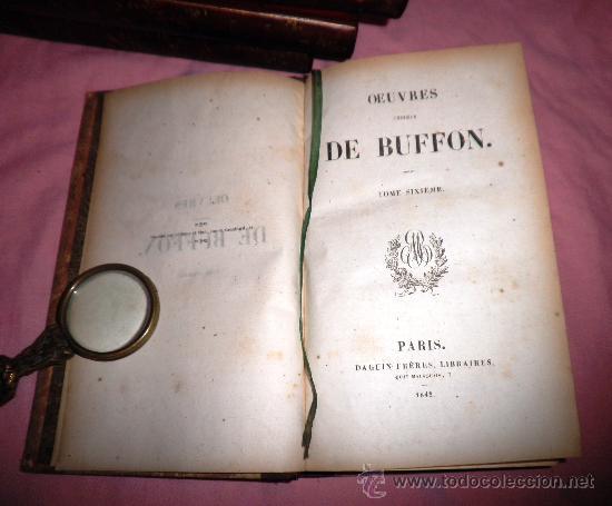Libros antiguos: OBRAS DE BUFFON - AÑO 1842 - BELLA EDICION ILUSTRADA CON GRABADOS EN COLOR. - Foto 15 - 36367937