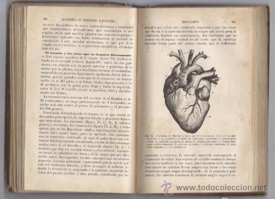 Libros antiguos: ELEMENTOS DE FISIOLOGIA Y ZOOLOGIA, ED. PERRIER - Foto 2 - 36935785