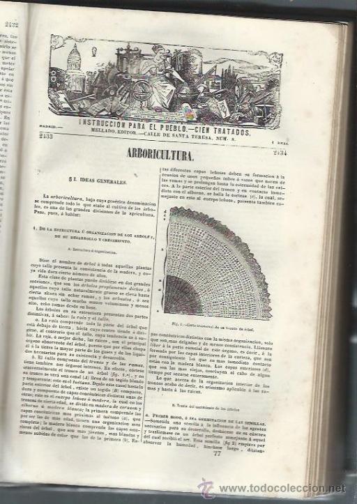 Libros antiguos: INSTRUCCIÓN PARA EL PUEBLO, CIEN TRATADOS, MELLADO EDITOR, MADRID, ENC HOLANDESA LOMO EN PIEL - Foto 2 - 40018460