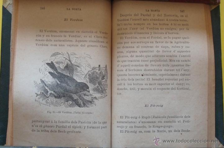 Libros antiguos: LIBRO ELS AUCELLS MÉS ÚTILS Á LA AGRICULTURA DE CATALUNYA EMILI TARRÉ AÑO 1902 - Foto 2 - 40190825