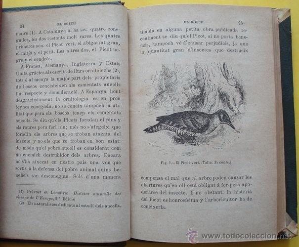 Libros antiguos: LIBRO ELS AUCELLS MÉS ÚTILS Á LA AGRICULTURA DE CATALUNYA EMILI TARRÉ AÑO 1902 - Foto 3 - 40190825