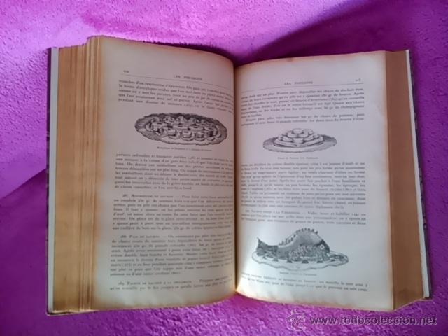 Libros antiguos: LA CUISINE ET LA PATISSERIE EXPLIQUEES DU CORDON-BLEU, F. BARTHELEMY 1894 - Foto 4 - 42827549