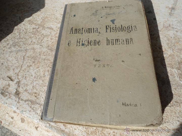 libro anatomia fisiología e higiene humanas a. - Comprar en ...