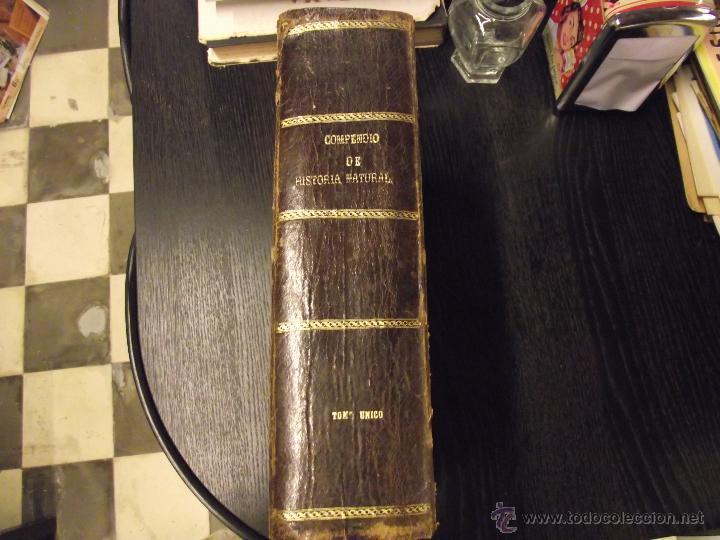 Libros antiguos: COMPENDIO DE HISTORIA UNIVERSAL DE CÉSAR CANTU 1877 - Foto 2 - 44703310