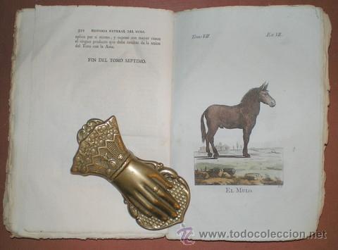 Libros antiguos: BUFFON, Conde de: HISTORIA NATURAL, GENERAL Y PARTICULAR ... Tomo VII. Madrid 1798 - Foto 5 - 44953709