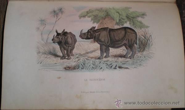 BUFFON: OEUVRES COMPLETES. 8 VOLS. 1852 (Libros Antiguos, Raros y Curiosos - Ciencias, Manuales y Oficios - Otros)