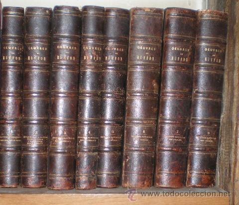 Libros antiguos: BUFFON: OEUVRES COMPLETES. 8 vols. 1852 - Foto 4 - 44954506