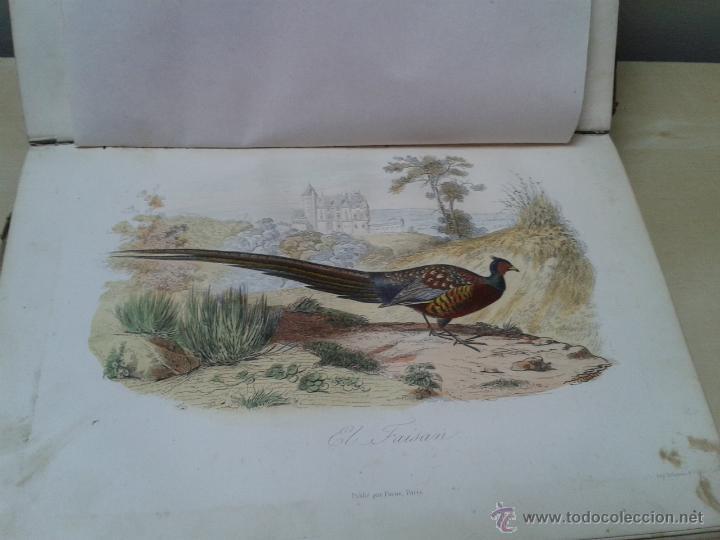 Libros antiguos: LOS HÉROES Y LAS GRANDEZAS DE LA TIERRA, 8 TOMOS. AÑO 1854 - Foto 112 - 45573799
