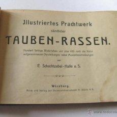 Libros antiguos: ALBUM DE PALOMAS. ILLUSTRIERTES PRACHTWERK. SAMTLICHER. TAUBEN RASSEN SCHACHTZABEL 1906. Lote 45750076