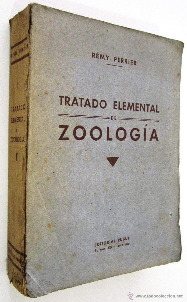 RÉMY PERRIER: TRATADO ELEMENTAL DE ZOOLOGÍA - 1928. (Libros Antiguos, Raros y Curiosos - Ciencias, Manuales y Oficios - Otros)