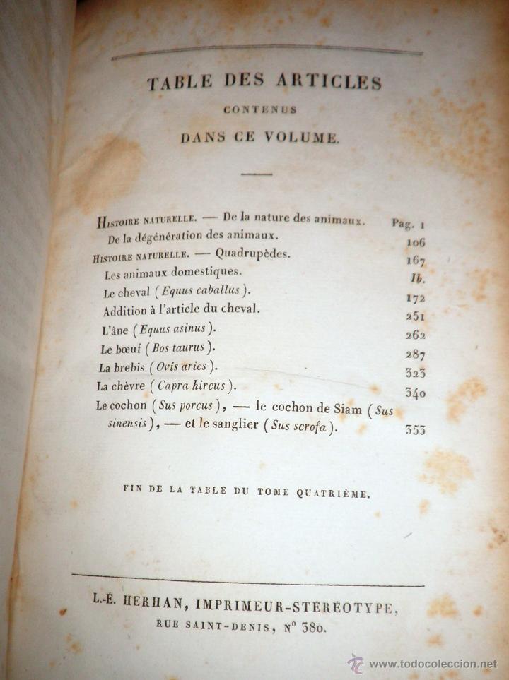 Libros antiguos: OBRAS DE BUFFON - AÑO 1842 - BELLA EDICION ILUSTRADA CON GRABADOS EN COLOR. - Foto 23 - 36367937