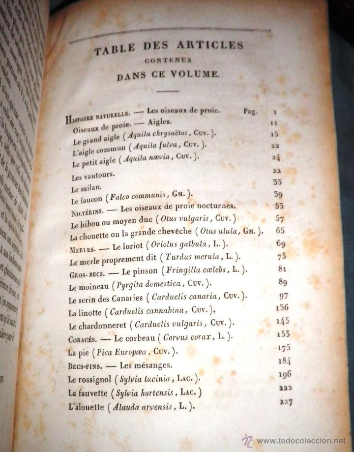 Libros antiguos: OBRAS DE BUFFON - AÑO 1842 - BELLA EDICION ILUSTRADA CON GRABADOS EN COLOR. - Foto 25 - 36367937
