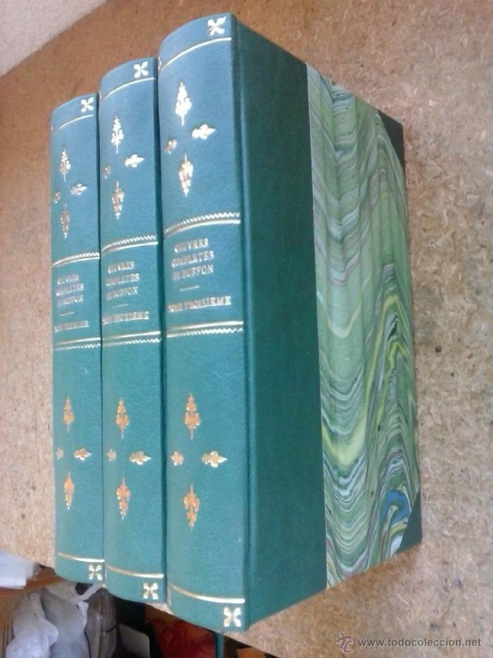 Libros antiguos: 3 volúmenes de Oeuvres completes de Buffon (1819) / Comte de Lacepède. Rara edición.. - Foto 2 - 47112943