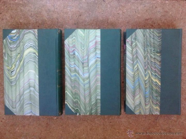 Libros antiguos: 3 volúmenes de Oeuvres completes de Buffon (1819) / Comte de Lacepède. Rara edición.. - Foto 4 - 47112943