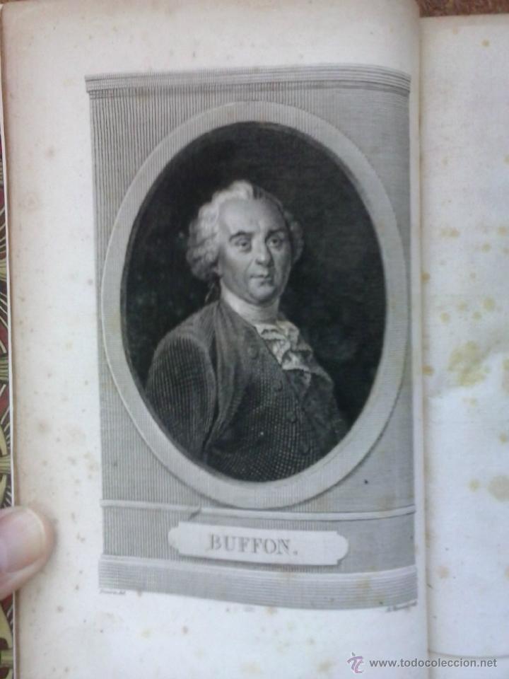 Libros antiguos: 3 volúmenes de Oeuvres completes de Buffon (1819) / Comte de Lacepède. Rara edición.. - Foto 10 - 47112943