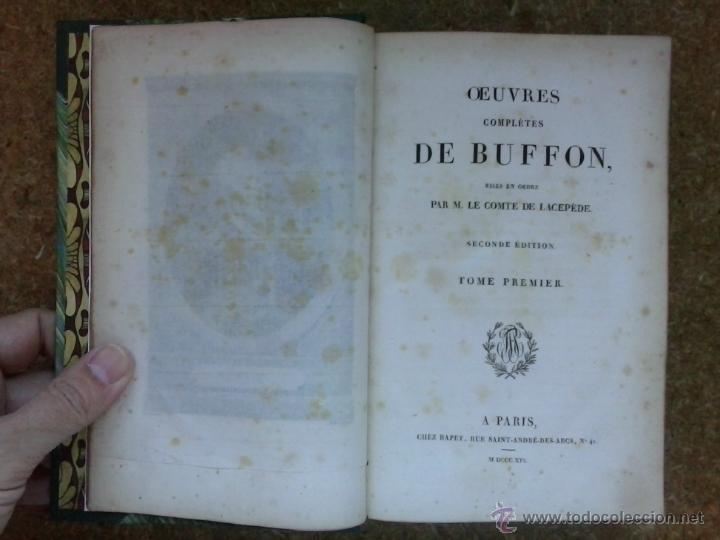 Libros antiguos: 3 volúmenes de Oeuvres completes de Buffon (1819) / Comte de Lacepède. Rara edición.. - Foto 11 - 47112943
