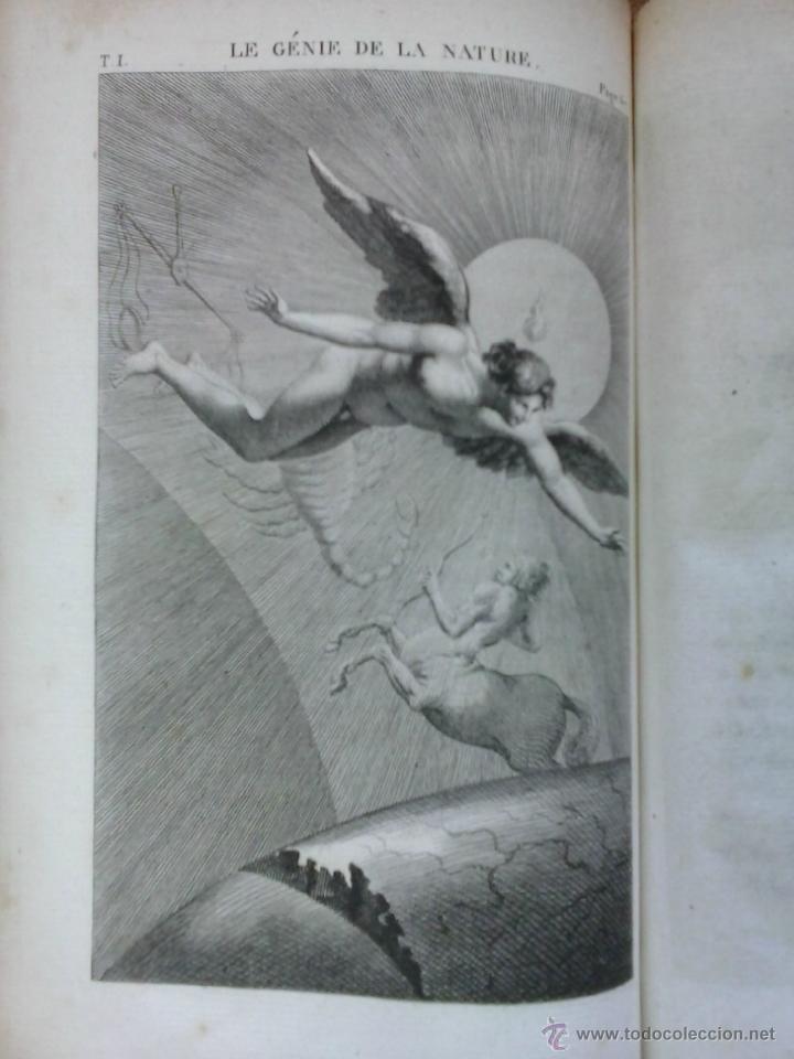 Libros antiguos: 3 volúmenes de Oeuvres completes de Buffon (1819) / Comte de Lacepède. Rara edición.. - Foto 14 - 47112943