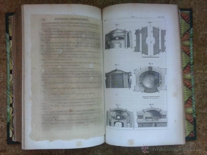 Libros antiguos: 3 volúmenes de Oeuvres completes de Buffon (1819) / Comte de Lacepède. Rara edición.. - Foto 22 - 47112943