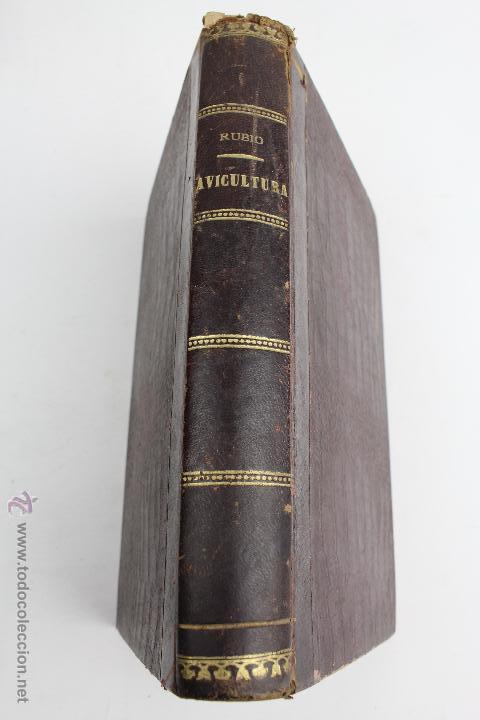 L- 890. AVICULTURA INDUSTRIAL. JUAN RUBIO M. Y VILLANUEVA. LIBRERIA F. PUIG. BARCELONA 1911 (Libros Antiguos, Raros y Curiosos - Ciencias, Manuales y Oficios - Otros)