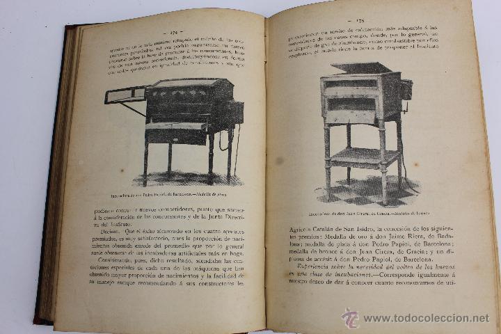 Libros antiguos: L- 890. AVICULTURA INDUSTRIAL. JUAN RUBIO M. Y VILLANUEVA. LIBRERIA F. PUIG. BARCELONA 1911 - Foto 4 - 47144446
