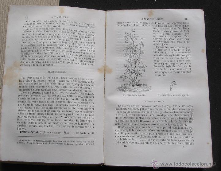 Libros antiguos: TRAITE ELEMENTAIRE D' AGRICULTURE - TOMO II - J. GIRARDIN ET A. DU BREUIL - GARNIER FRERES 1875 - Foto 4 - 48445798