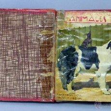 Libros antiguos: EL REINO ANIMAL PARA NIÑOS ANIMALES DOMÉSTICOS 1 2 3 4 DAÑINOS 1 2 3 4 SALVAJES 1 2 SOPENA ENCUADERN. Lote 48623965