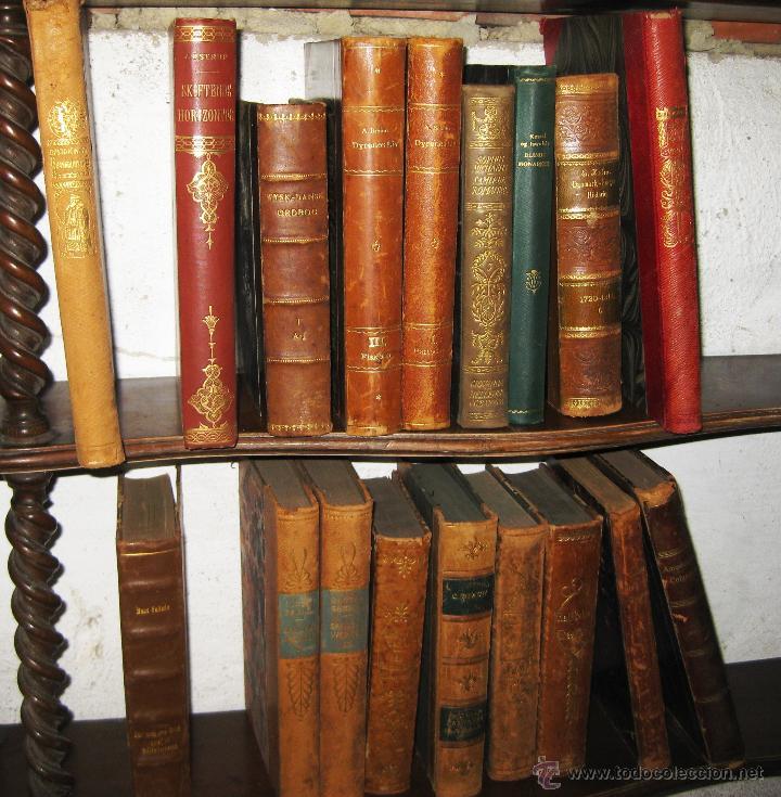Gran Lote 9 Libros Antiguos En Aleman 1880 1910 Kaufen Andere Alte