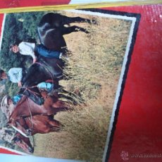 Libros antiguos: LIBRO COMIC FURIA. Lote 50150896