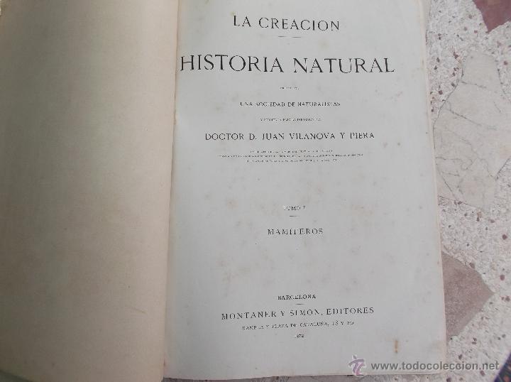 Libros antiguos: la creacion historia natural tomo-1 ,mamiferos,1872,montaner y simon editores, 34x26,880,paginas, - Foto 2 - 51009107